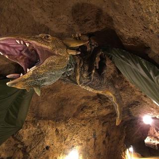 A barlang sárkánya