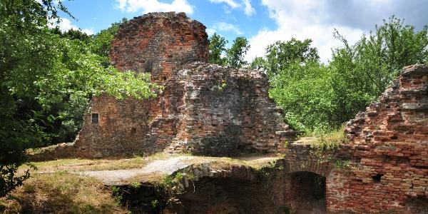 Fehérkő várának romjai az erdő közepén
