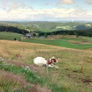 Landschaftspfleger in der Pause