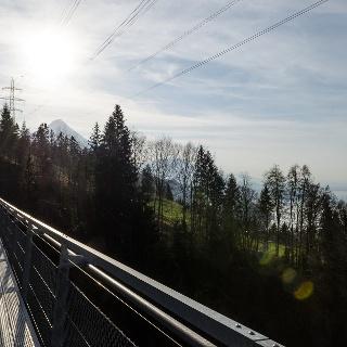 Blick auf See und Berge Hängebrücke Leissigen