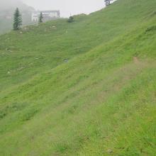Tölzer Hütte im Anstieg über Wiesenweg