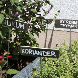 Kräuterweg
