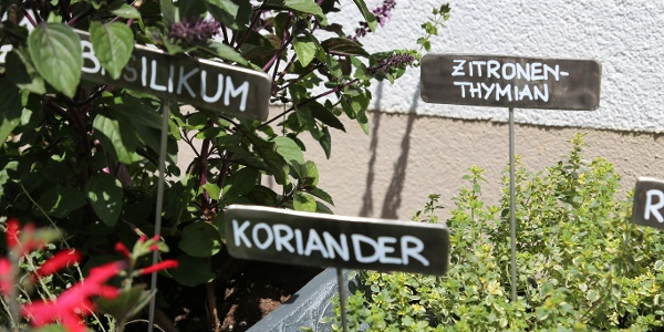 "Kräuterweg ""Probiar Amol"" - Helene Wakolbinger"