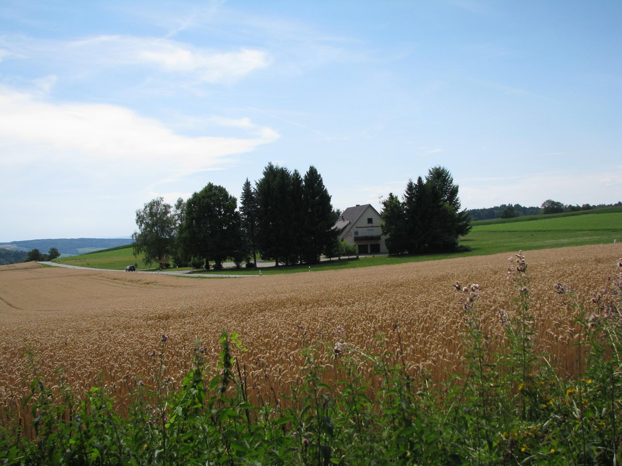 Landgasthof Schienen