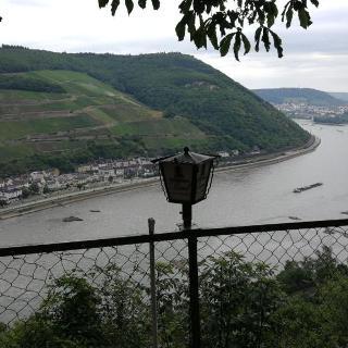 Rhein-Blick vom Schweizer Haus