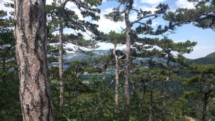 Blick vom Mitterberg (200 m östlich)