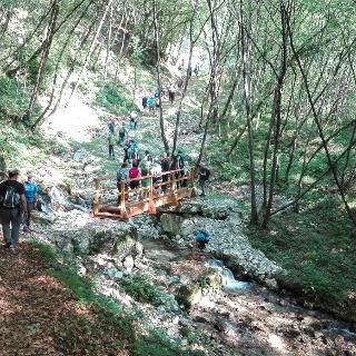 Il sentiero del Berghem