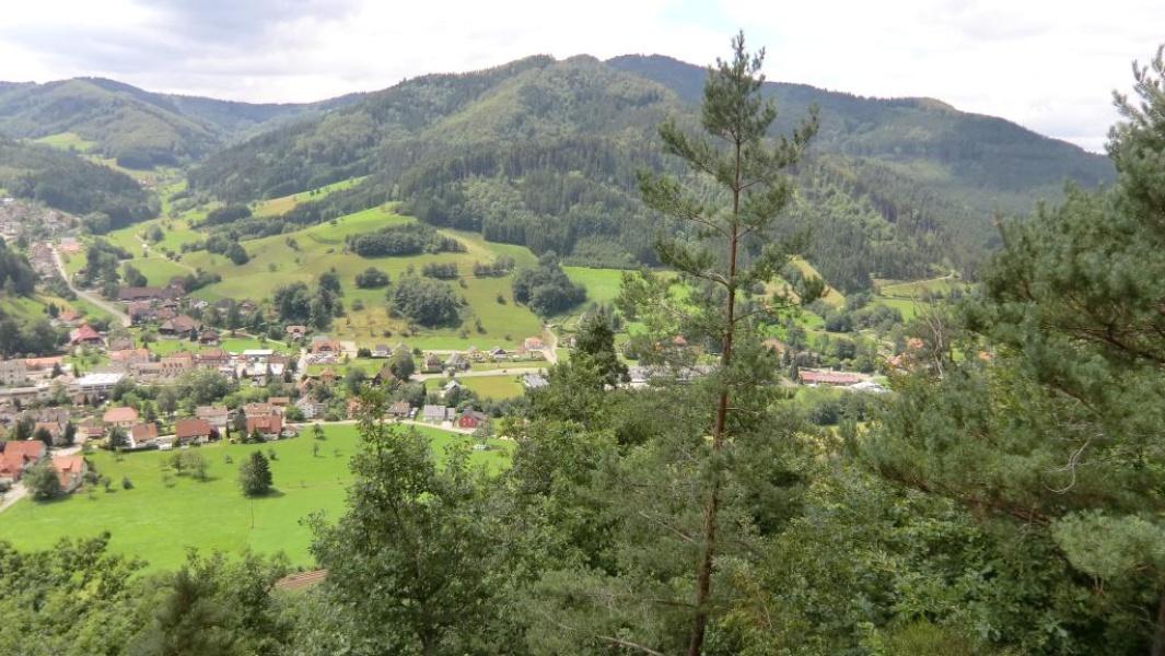 Gutach - Große Mosersteinrunde