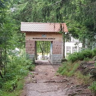 Westwegtor am Mummelsee