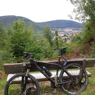 Aussichtsbänkle auf Neckargemünd