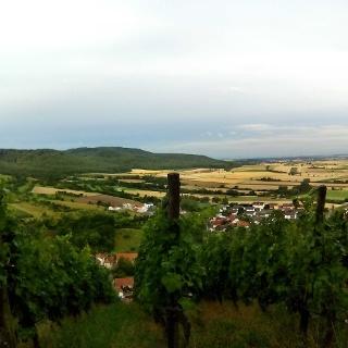 Blick nach Westen von der Ruine Ebersburg