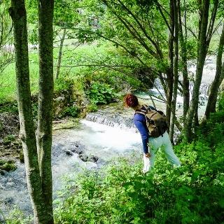 Der Startpunkt in Hinternasswald