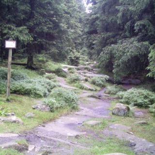 Weg zur Achtermannshöhe