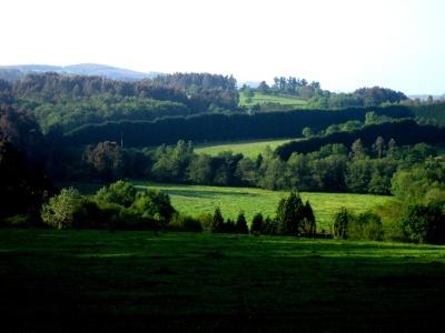 durch grüne Hügellandschaft