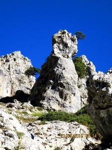 Picos vor blauem Himmel
