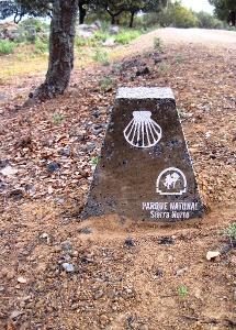 durch den Naturpark Sierra Norte