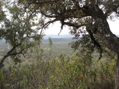 Blick zurück in den Naturpark