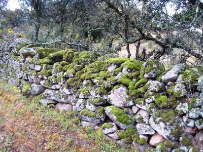 alte Steinmauern säumen den Weg