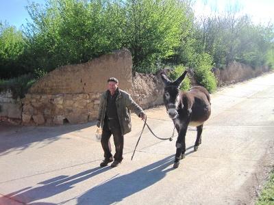 Begegnungen auf dem Camino