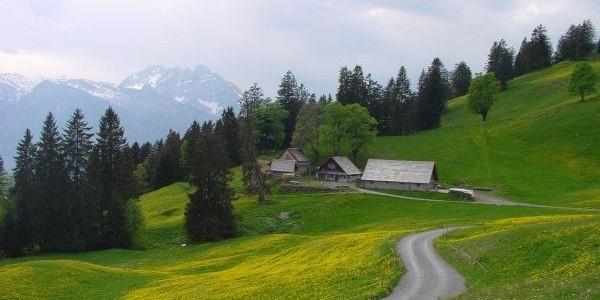 Alp Schrina, mit Moränenhügel davor