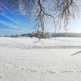 Winterwandern Sonnenbühl