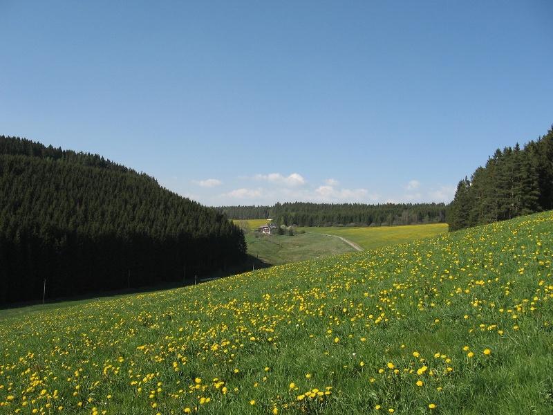 Qualitätsweg WiesenTäler Unterkirnach