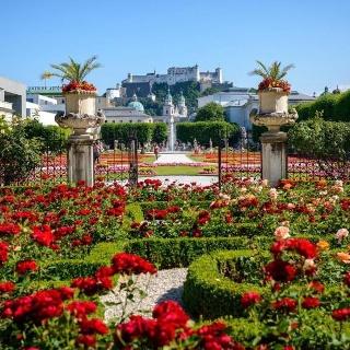 Mirabellgarten - im Hintergrund die Festung