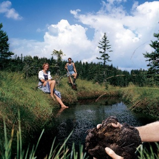 Hochmoor Moorsee