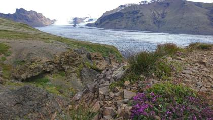 Natur pur im ehemaligen Skaftafell-Nationalpark