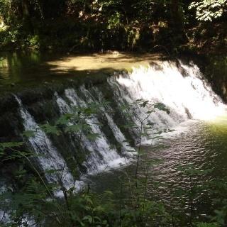 Wasserfall in der Gauchach