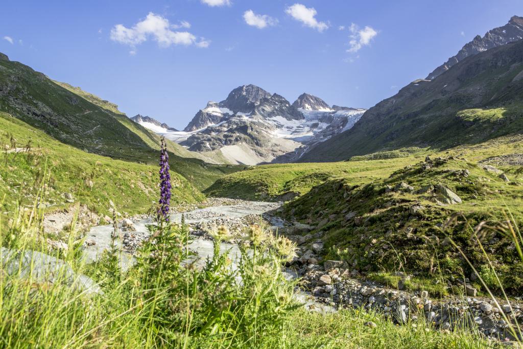 Piz Buin (3.312 m) • Berggipfel » Outdoor-Portal Montafon