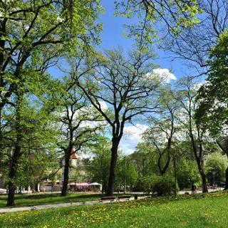 Lutherpark Plauen an der Lutherkirche
