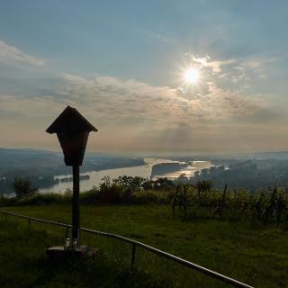 Rochuskreuz und Rhein