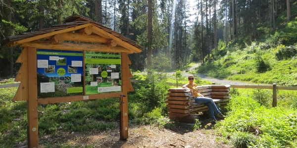Posten «Die Funktionen des Waldes».