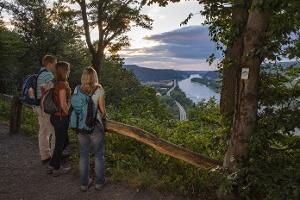 Ausblicke ins Rheintal (Foto: Klaus-Peter Kappest, Quelle: Rhein-Mosel-Eifel-Touristik)