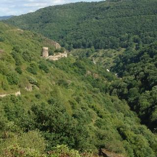 Steeger Tal mit Ruine Stahlberg