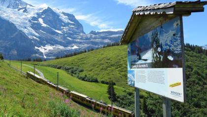 Auf dem Lauberhorn-Trail mit Wengernalpbahn.