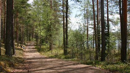 Behindertengerechter Abschnitt der Route Luupää