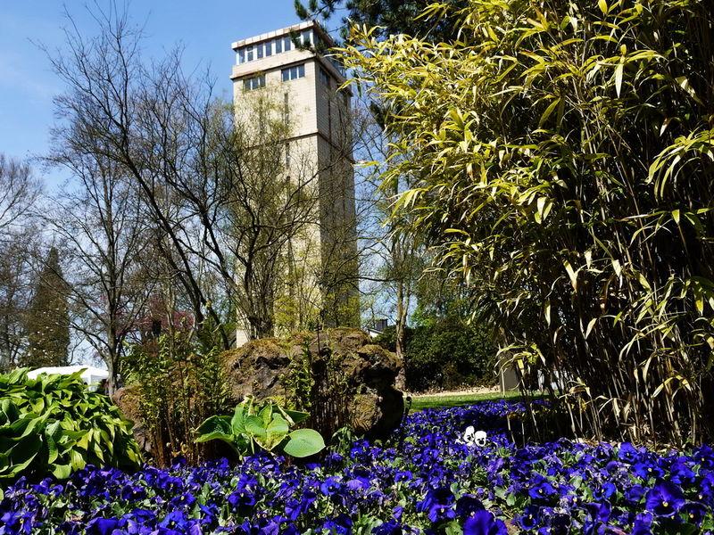Hindenburgturm im Blumengarten in Bexbach