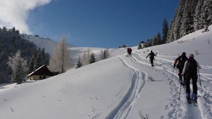 Der Tourenlehrpfad kurz vor dem Sattel zwischen Loibersbacherhöhe und Faistenauer Schafberg