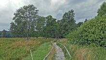 Vom Harpprechthaus zum Schopflocher Moor