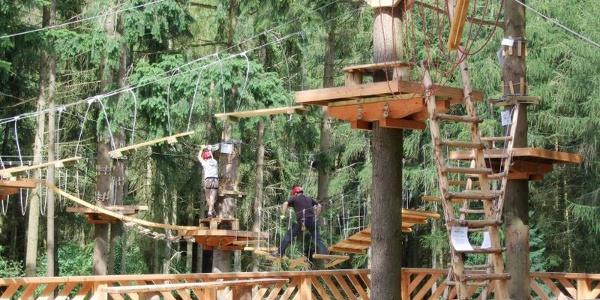 Adventure Forest (1)
