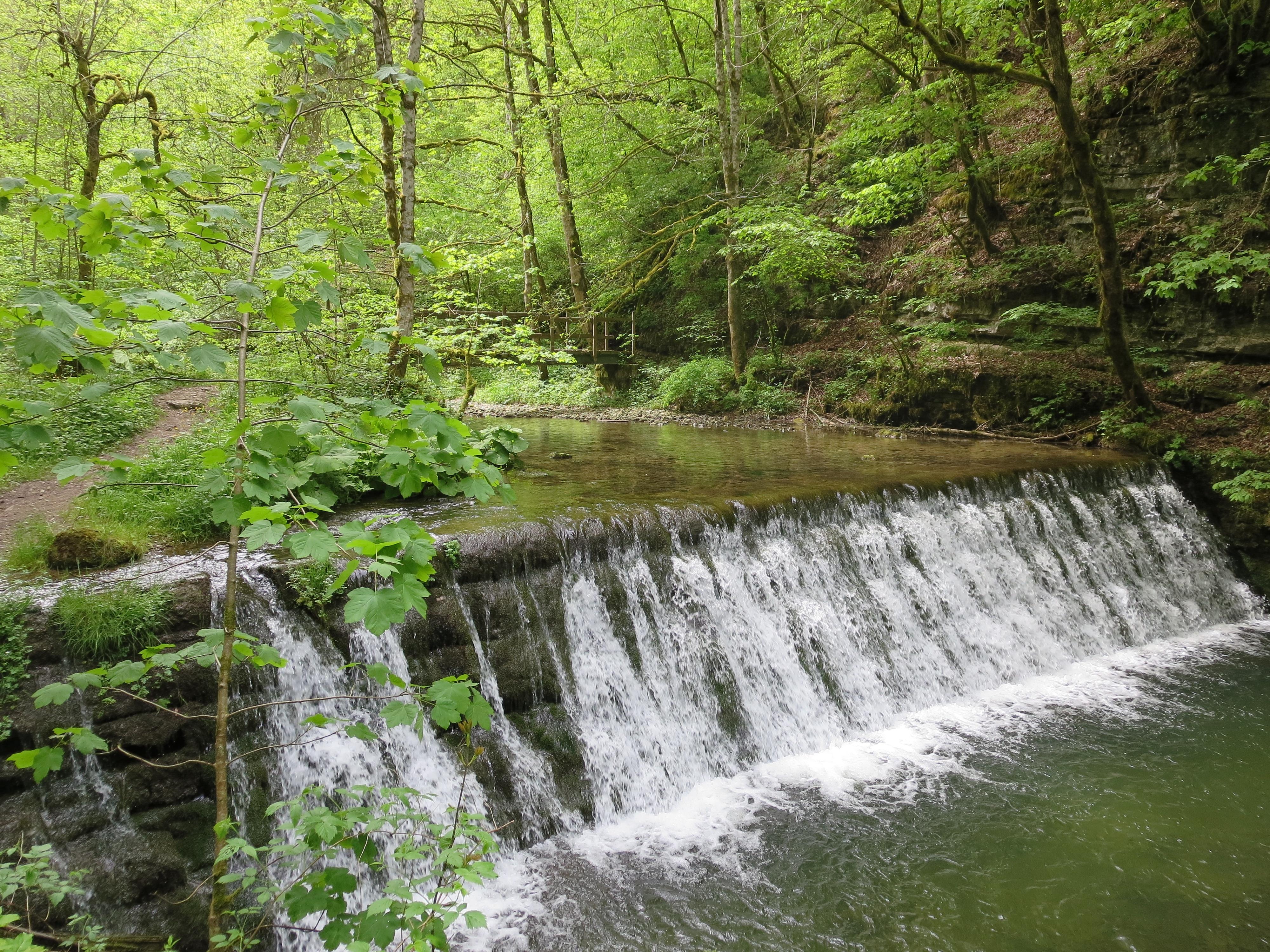 ursprüngliche Natur mit wildem Wasser