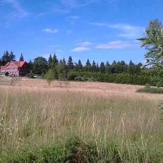 Ebertswiese