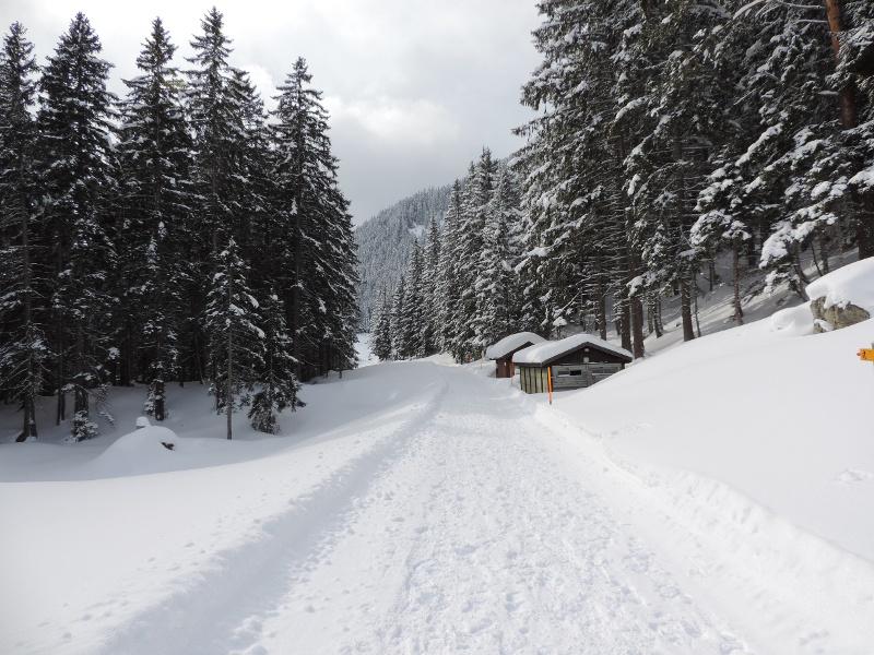 Winterlandschaft Arni