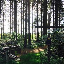 Gipfelkreuz am Mittelberg