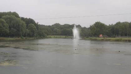 Pond in parc Château d'Arenberg