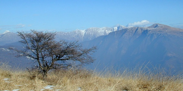 Blick auf den Westhang des Monte Matajur