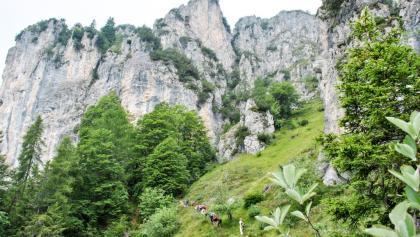 Vista verso il Monte Carone