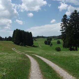 Der Weg nach Zaumberg
